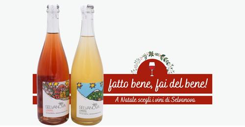 Natale 2020: promozioni sui vini della fattoria Selvanova!